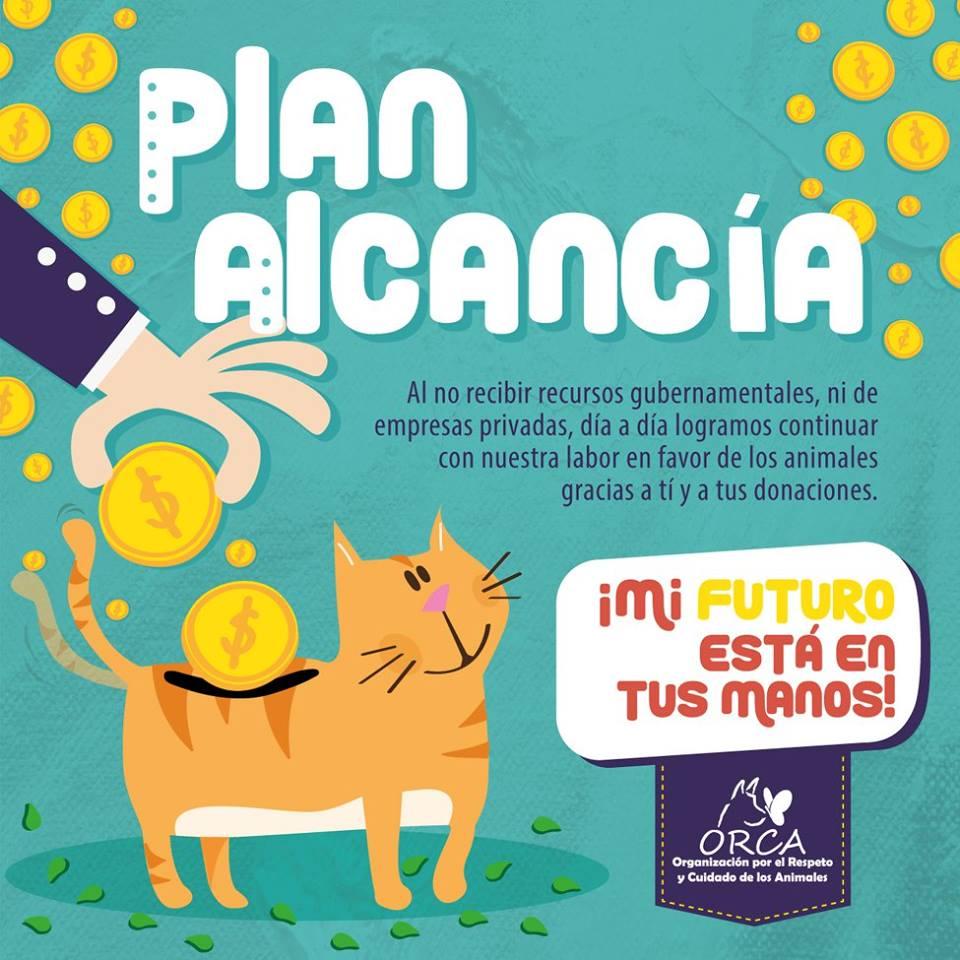 PlanAlcancia_868040.jpg